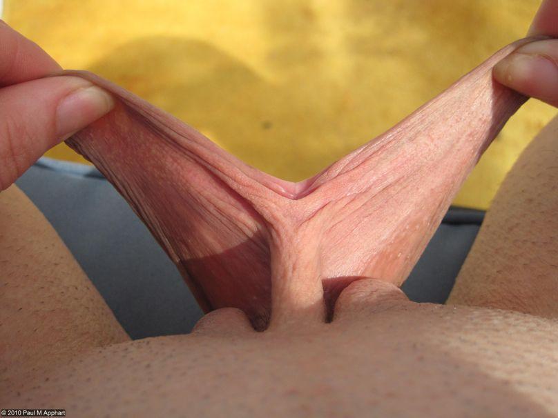 Фото половых губ самых больших