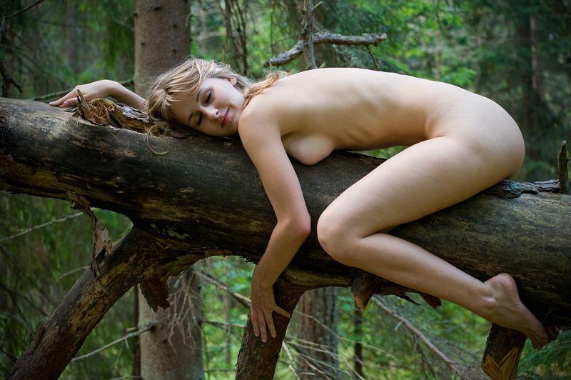 фото голая баба лезет на дерево